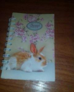 Записная книжка с кроликом(блокнот)