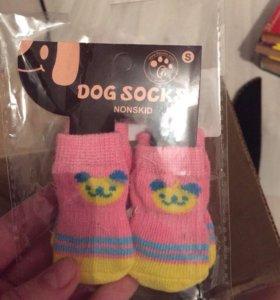 Носки для собачки