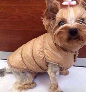Куртка-дутик для собак