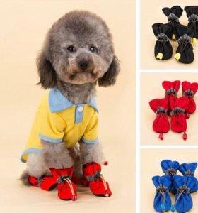 Сапожки для собак