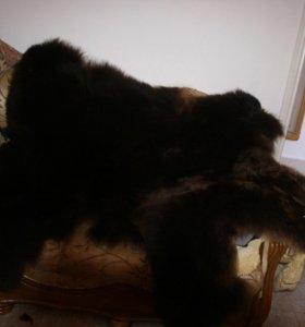 Медведь ( большой )