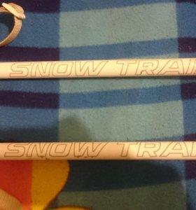 Палки для лыж
