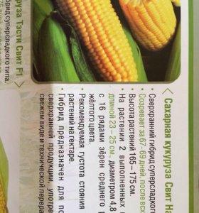 Семена сладкой кукурузы