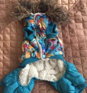 зимняя курточка на собаку