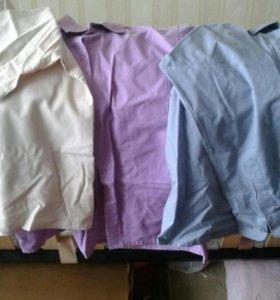 Рубашки школьные с длинными и с коротким рукавом