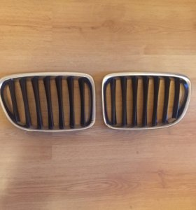 Решётки  радиатора BMW X1 e84 / ноздри