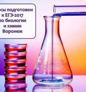 Курсы ЕГЭ химия