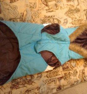 Собачья Куртка(новая)
