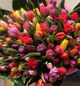 Тюльпаны сезон открыт