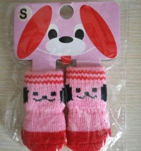 Носки для маленьких собак