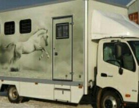 Перевозка крс, лошадей, овец, свиней, животных.