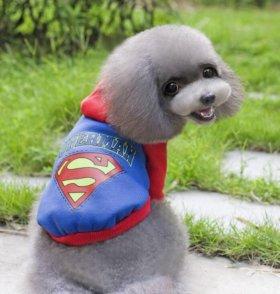 Свитшот толстовка одежда для собак