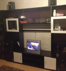 Продаю стенку ,шкаф + телевизор