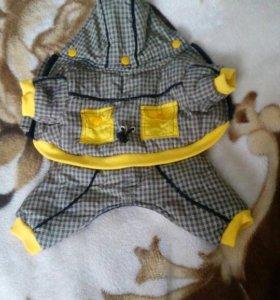 Осенняя куртка для собаки