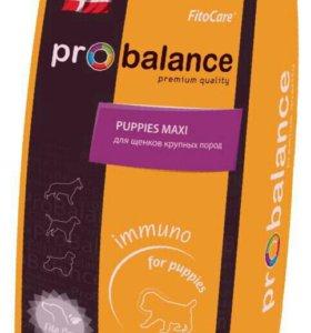 Корм ProBalance Immuno Puppies Maxi 15кг.