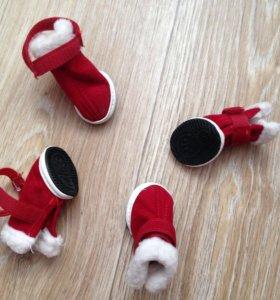 Ботиночки на мелкую собачку