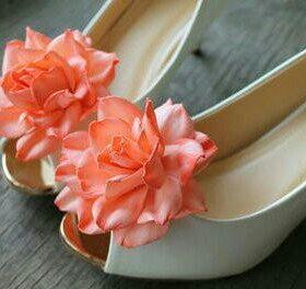 Клипсы для обуви