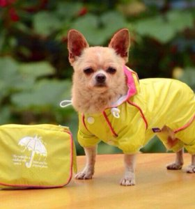 Дождевик для собачки