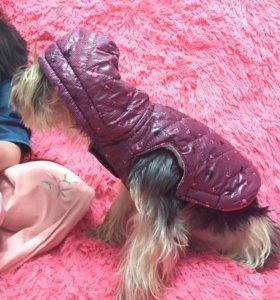 Куртка для собачек
