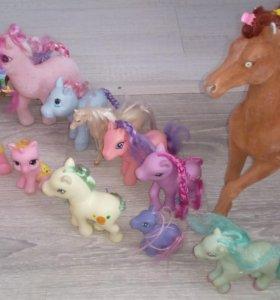 Лошади, пони