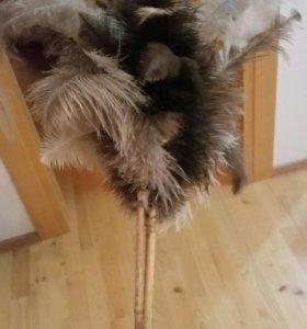 Перья страуса на бамбуковой палочке