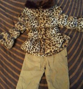 Куртка с вельветовыми брюками (комплект)