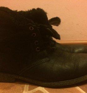 Ботинки мужские Francesco Donni зима