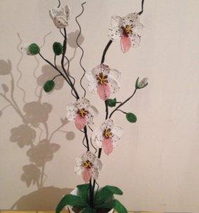 Тигровая орхидея из бисера