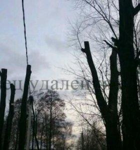 Удаление, спил вырубка деревьев