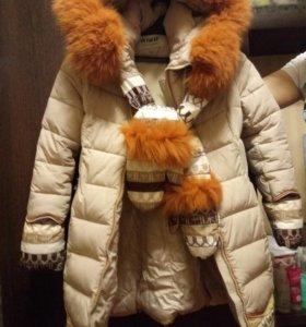 Пуховичок зимний