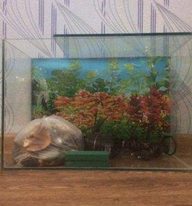 12 л аквариум