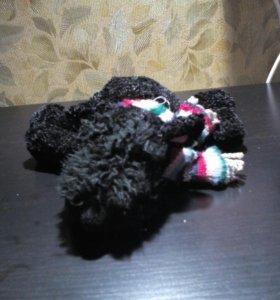 Мягкая игрушка собаки