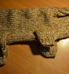 Кофта для чихуа зимняя вязанная