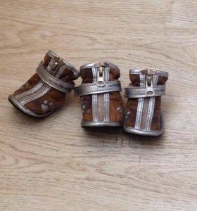 Ботиночки для собачки за шоколадку