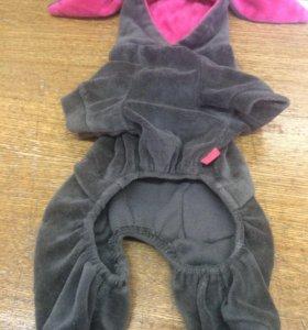 Велюровый костюм для маленькой собачки