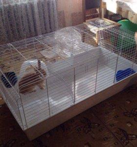 Клетка для кроликов и грызунов