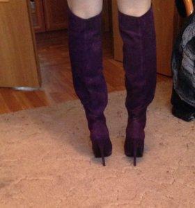 Сапоги ботфорты фиолетовые mascotte