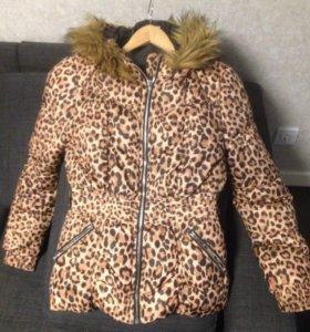 Куртка осенне-весенняя HM