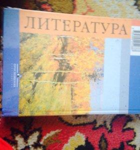 Учебники по литературе 9 класс 2 части