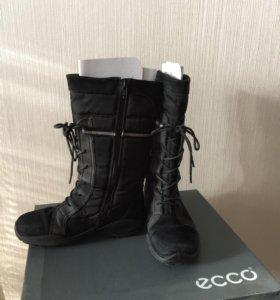 Зимние сапоги Ecco (размер32)