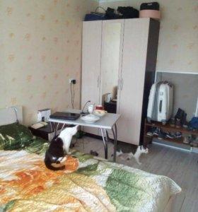 Продам 1-комнатную квартиру дёшево!