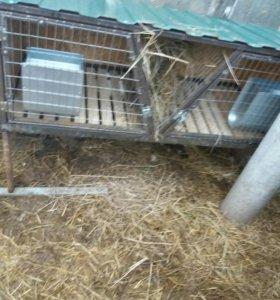 Клетки вольеры для птиц и кролей, на заказ