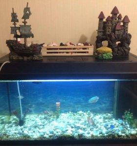 Аквариум с рыбками 80л