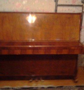 Пианино для будущего Моцарта