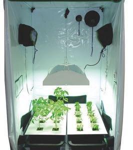 Groubox изготовление шкафов для выращивания