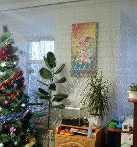 1ком. квартира в центре г. Павлово