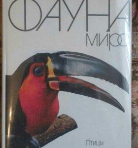 Фауна мира. Птицы