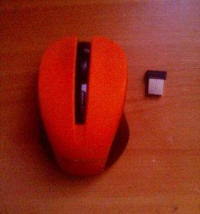 Мышка безпороводная