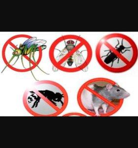 Уничтожения насекомых и грызунов