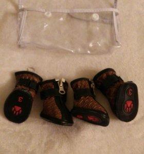 Ботиночки для маленьких собак